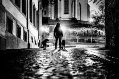 2020_12_12_Nachthundis_in_Mainzer_Altstadt_A7300773.jpg